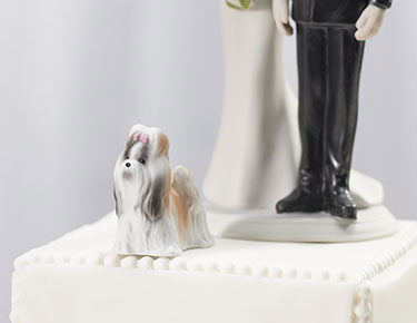 Pet Cake Toppers
