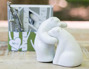 Salt & Pepper Shaker Favors