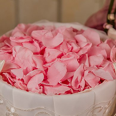 preserved petals Real White rose petals NOT silk wedding confetti decoration