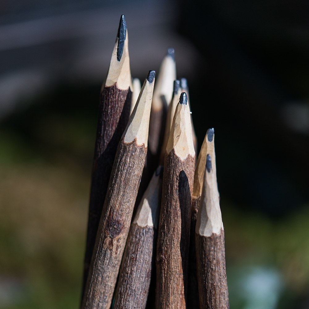 Rustic Wood Pencil Favor