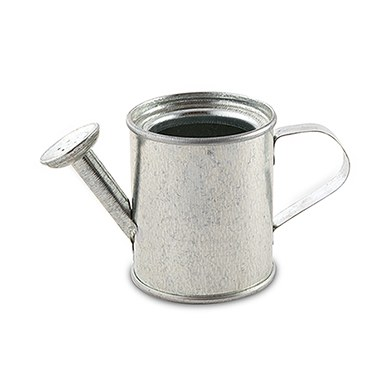 Miniature Silver Metal Garden Watering Can Favours
