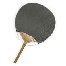 Paddle Fan - Black