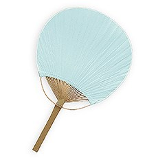 Paddle Fan - Robin's Egg Blue