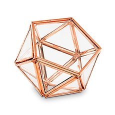 4623 56 w small glass geometric terrarium ring boxe16e9e6b47d236adf45b2c86354c690e