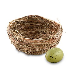 Mini Bird's Nest Wedding Favor (12)