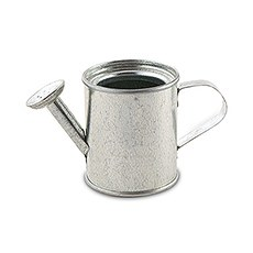 Miniature Silver Metal Garden Watering Can Favors (12)
