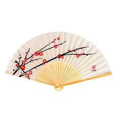 Cherry Blossom Hand Fans (6)
