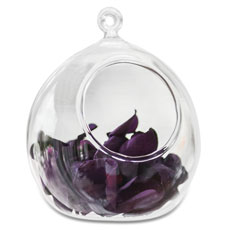 Glass Globe Wedding Decoration or Favor (4)