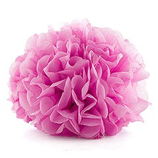 """Celebration Peonies"" Tissue Paper Flowers - Extra Large"