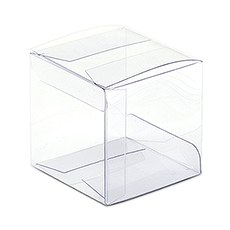 Transparent Acetate Favor Box (10)