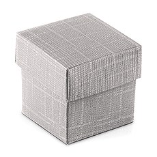 Lustrous Silver Favor Box with Lid (10)