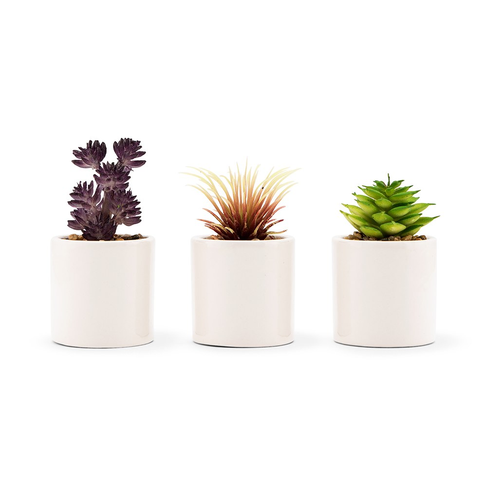 Small Faux Succulent Plants - Set of 6