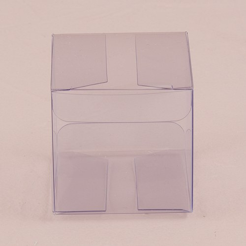 Transparent Acetate Favor Box