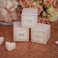 Geo Blush Favor Boxes - 10 Pack