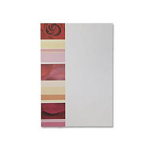 Rose Dream STD/ Thank You Cards - 10 Pack