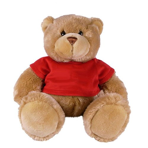 Teddy Bear with Red T shirt