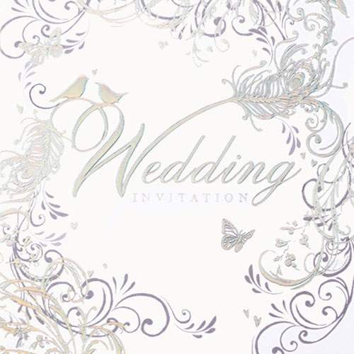 Enchanting Feather Design Wedding Invitation Cards - 6 Pack