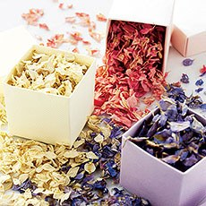 Freeze Dried Delphinium Petals Pack