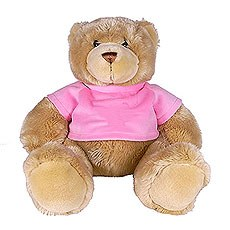 Flower Girl Teddy Gift with Pink T Shirt