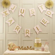 """Pastel Perfection """"Just Married"""" Flag Bunting"""