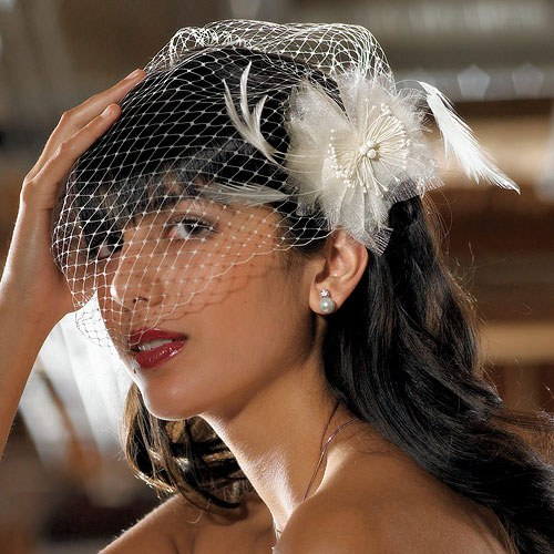 Bird Cage Style Wedding Bridal Veil