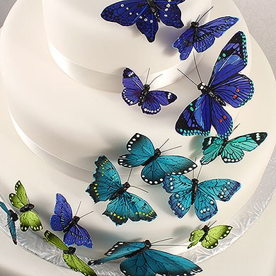 butterfly cake decorations butterfly cake decorations set of 24 the knot shop 2163